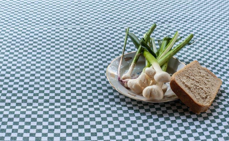 Stilleben med ung vitlök på tappningplattan med en fred av vitt bröd, closeup royaltyfri foto