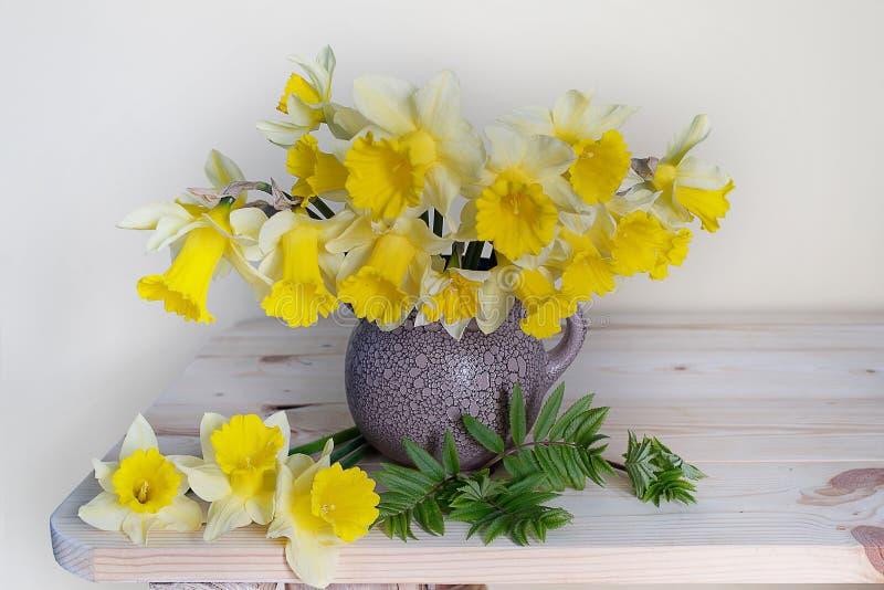 Stilleben med vårblommor Primulor i en vas på en vit bakgrund fotografering för bildbyråer