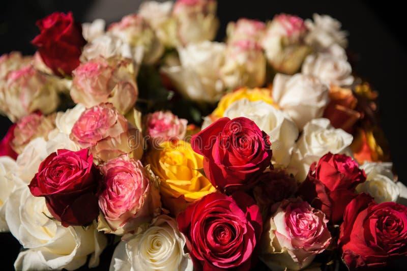 Stillebenbukett av rosor royaltyfria foton