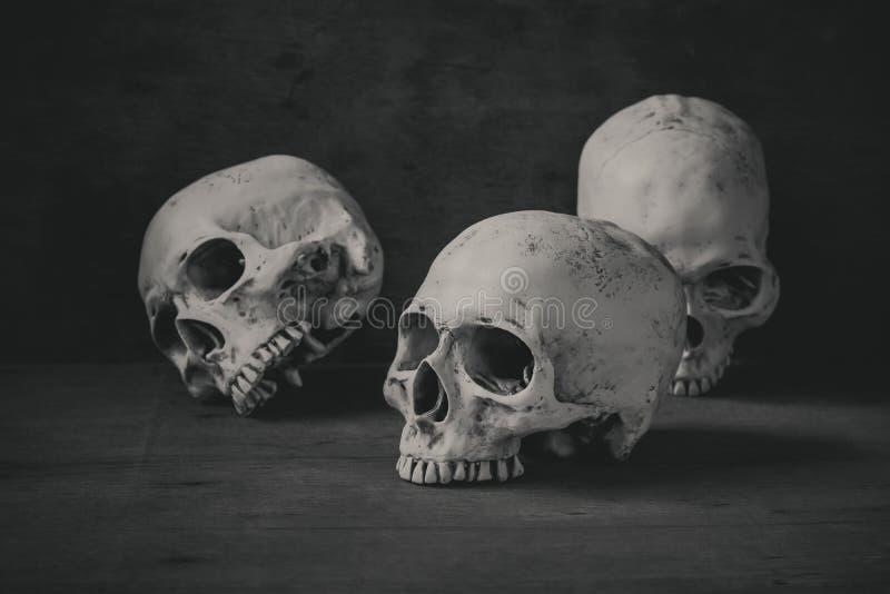 Stillebenfotografi med mänskliga skallar på den wood tabellen royaltyfri foto