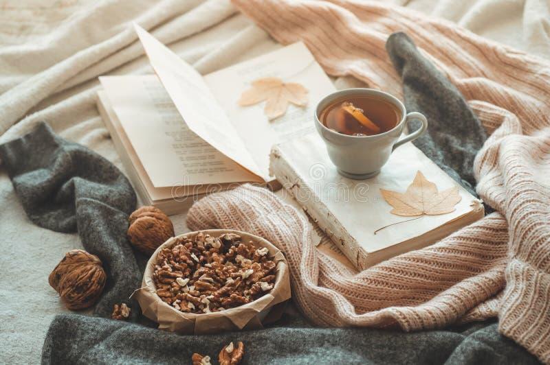Stilleven in huisbinnenland van woonkamer Sweaters en kop thee met een kegel op de boeken lees Het comfortabele concept van de de royalty-vrije stock foto