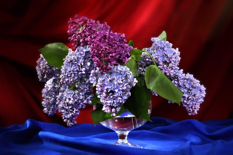 Stilleven met boeket van sering in decoratieve vaas stock afbeelding