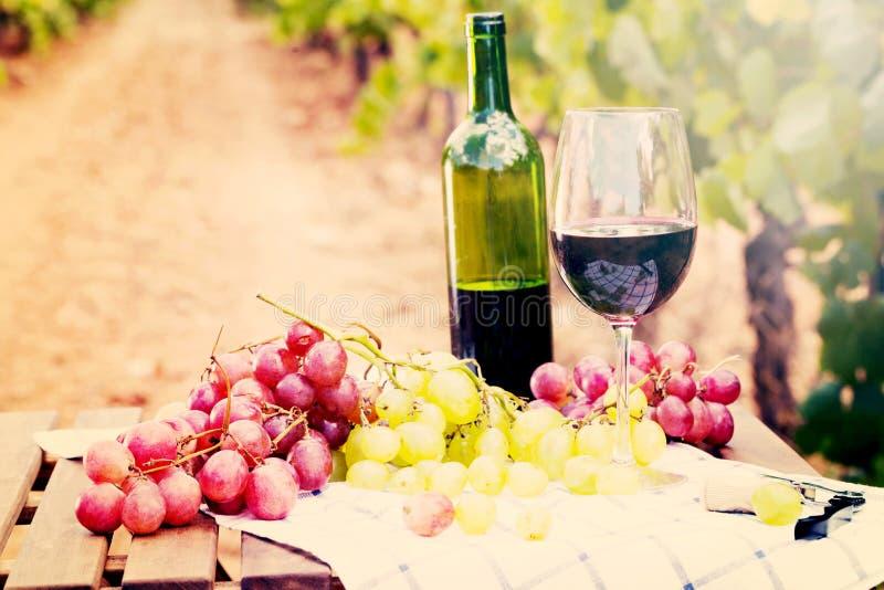 Stilleven met glas rode wijn en druiven royalty-vrije stock foto's