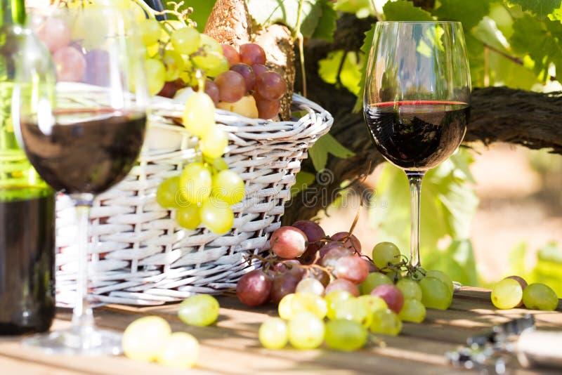 Stilleven met glas van rode wijndruiven en picknickmand op Ta stock fotografie