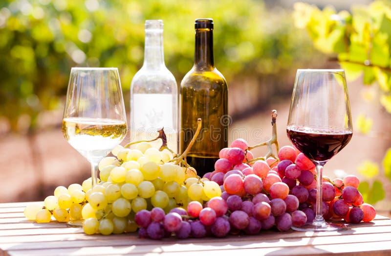 Stilleven met glazen rode en witte wijn en druiven op gebied van wijngaard stock afbeeldingen