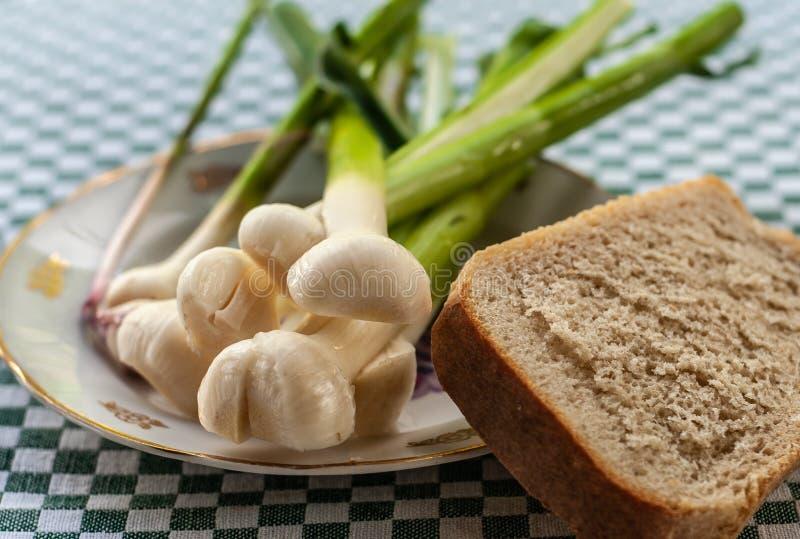 Stilleven met jong knoflook op uitstekende plaat met één vrede van wit brood, close-up royalty-vrije stock afbeeldingen