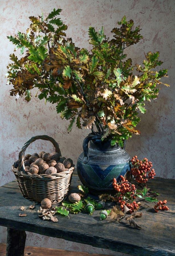 Stilleven met okkernoot en eiken bladeren stock foto