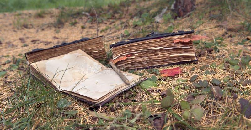 Stilleven met oude boeken in de horizontale tuin stock afbeeldingen