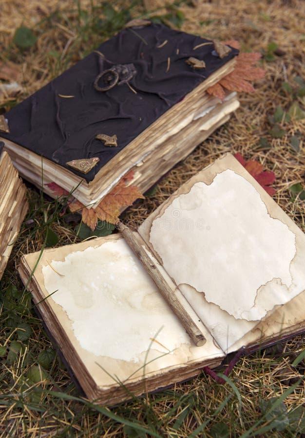 Stilleven met oude boeken in de tuin stock foto