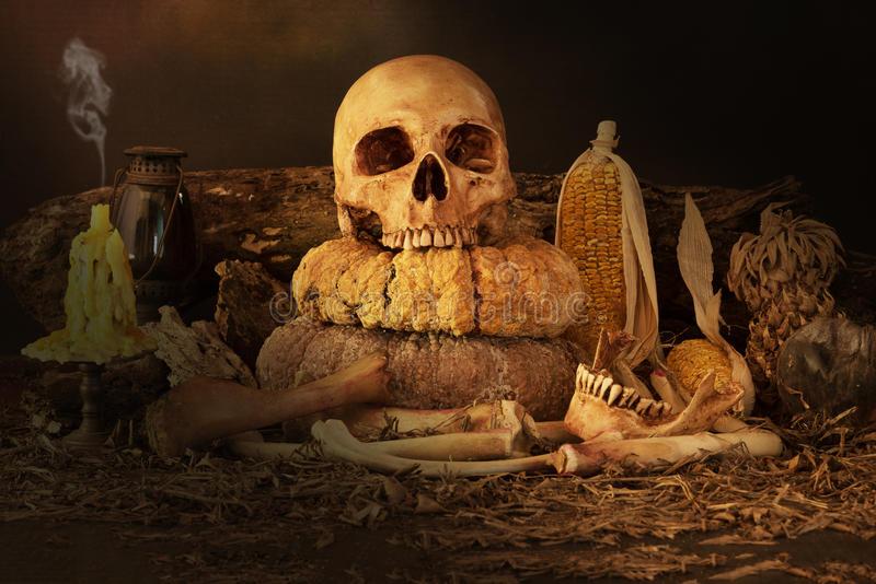 Stilleven met schedel, droog fruit en hooi royalty-vrije stock foto's