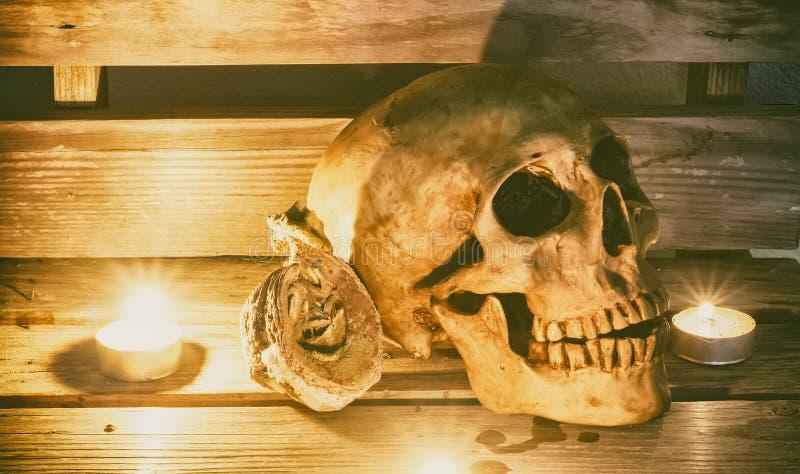 Stilleven met schedel, pompoen stock afbeeldingen