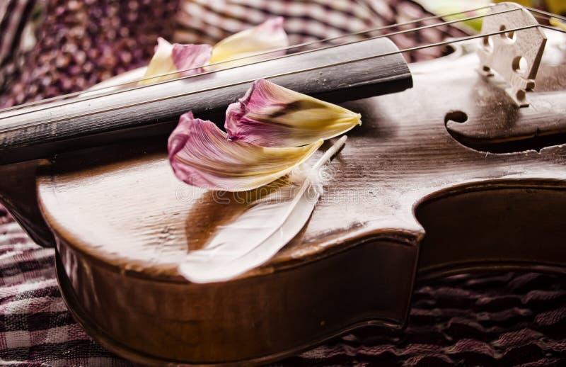 Stilleven met uitstekende viool en bloemblaadjes Close-up van oude houten viool Het instrument van de Stringedmuziek op abstracte royalty-vrije stock afbeeldingen