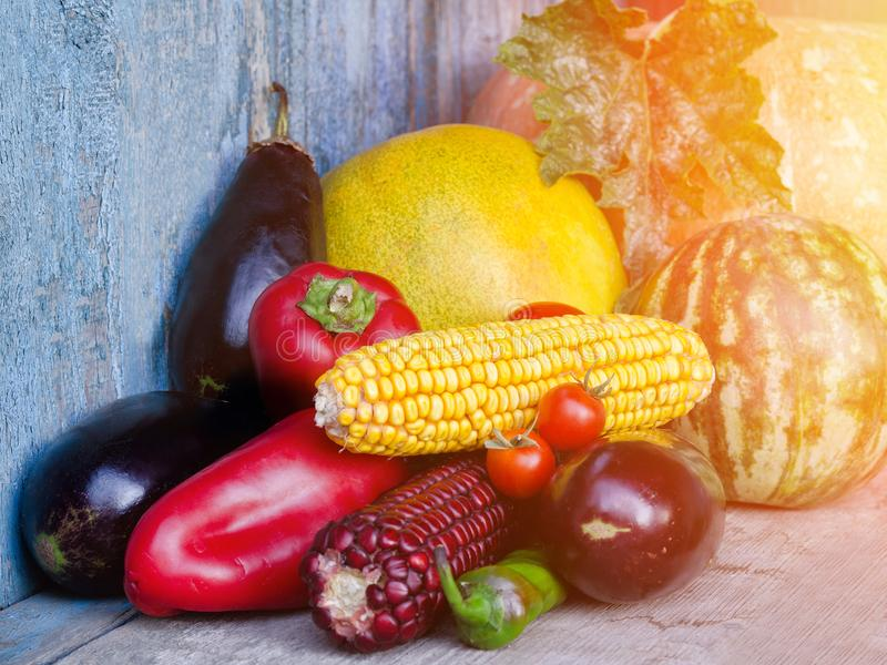 Stilleven van de herfstgroenten: meloen en watermeloen, graan, aubergine, peper, tomaten royalty-vrije stock fotografie
