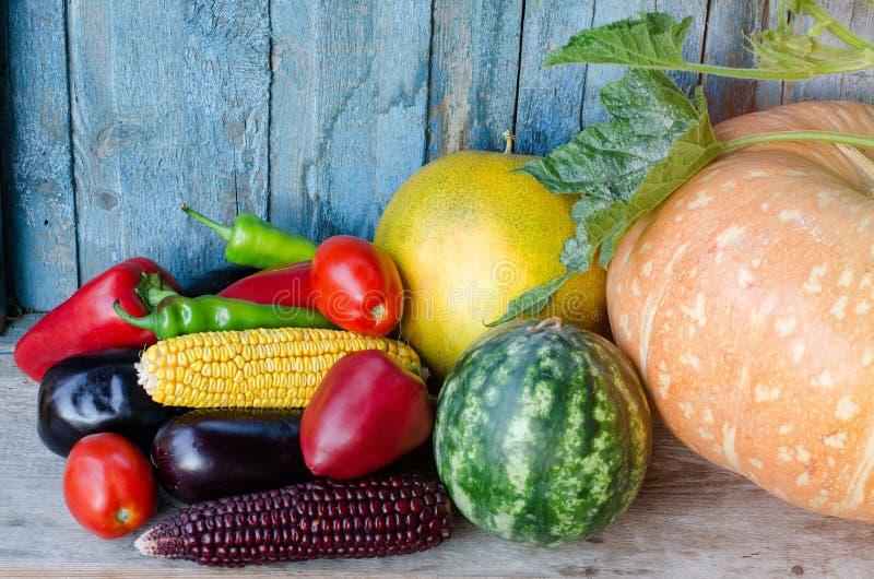Stilleven van de herfstgroenten: meloen, watermeloen, graan, aubergine, peper, tomaten royalty-vrije stock afbeeldingen