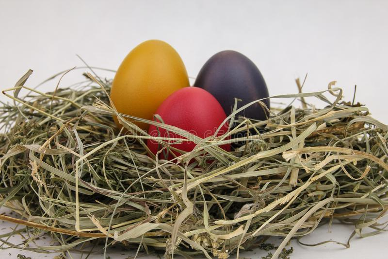 Stilleven van eieren, paaseieren op het droge gras stock afbeeldingen
