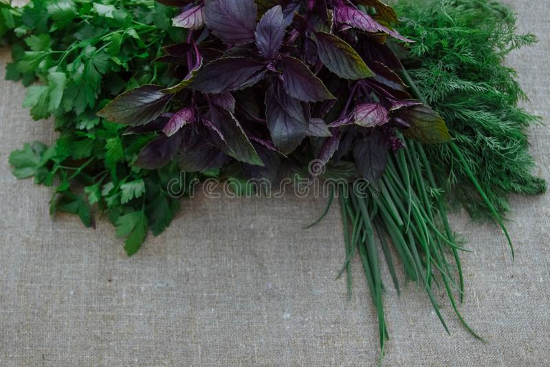 Stilleven van gezonde en de lentekruiden stock afbeelding