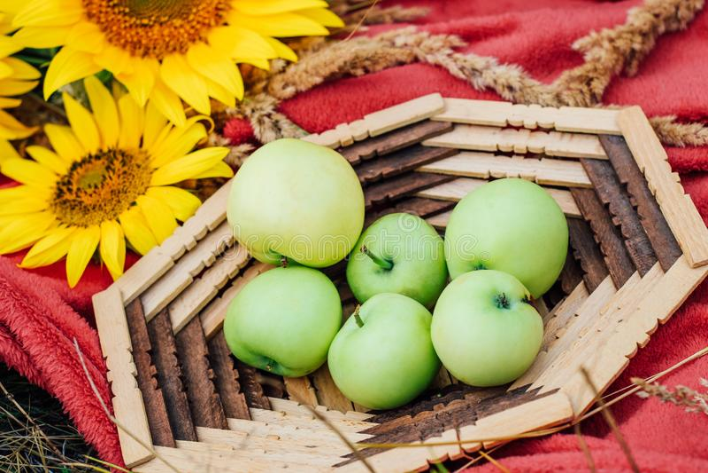 Stillevenzonnebloemen en groene appelen in een mand stock foto's