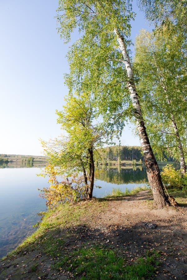 Stillhet klar sjö i träna royaltyfri fotografi