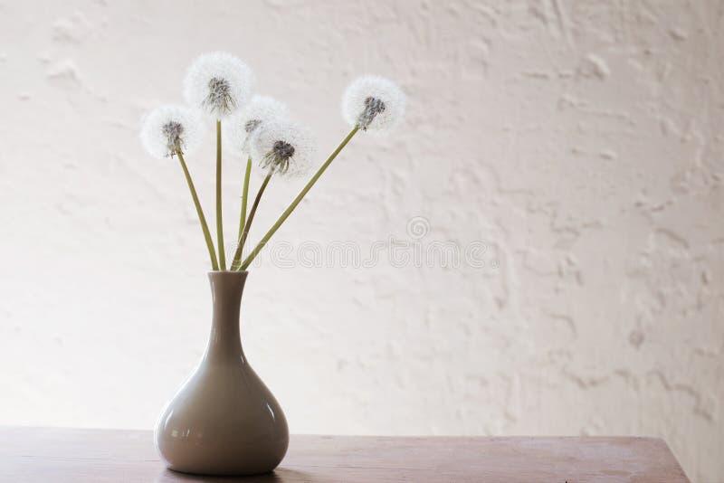 Stillife with dandelions. On white grunge background stock images