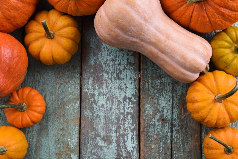 Stillife van heldere oranje pompoenen en butternut pompoenen op blu stock afbeeldingen