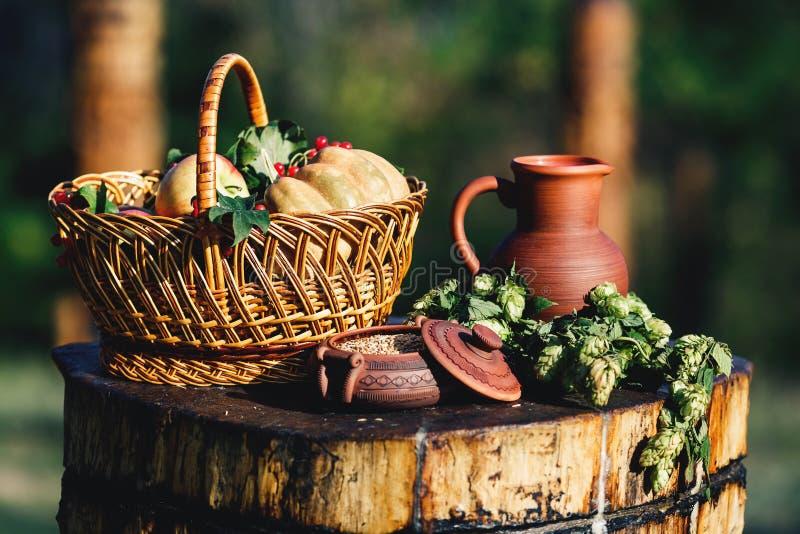 Stillleben auf Natur von einem Lehmkrug, Weizen in einem Topf, Hopfen auf einer hölzernen Plattform, Körbe mit einem Kürbis, Äpfe stockfotografie