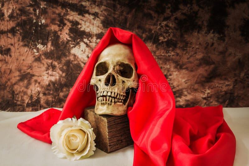Stillleben mit einem menschlichen Schädel mit einer gefälschten Weißrose lizenzfreies stockbild