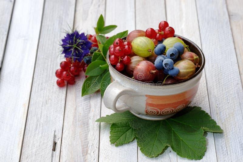 Stillleben mit frischen Früchten lizenzfreie stockfotografie