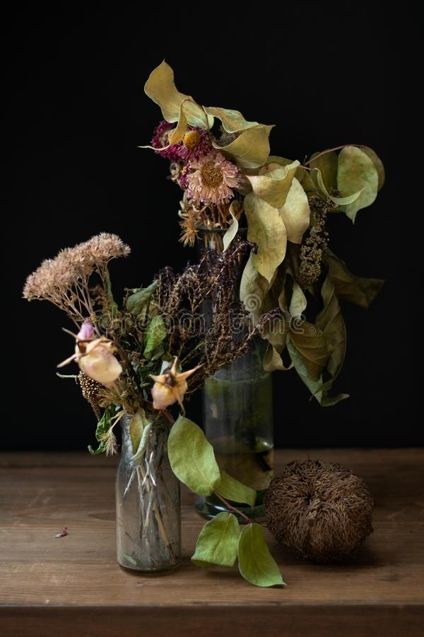 Stillleben mit getrockneten Blumen lizenzfreies stockfoto