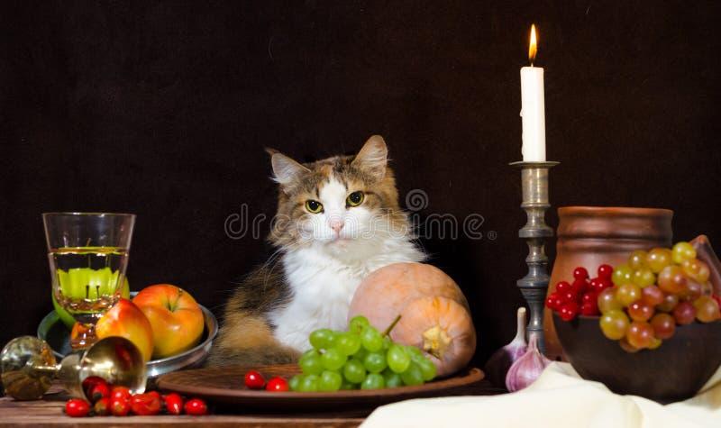 Stillleben mit Katzenkürbis-Traubenhund stieg grüne Flaschentrauben stockbilder