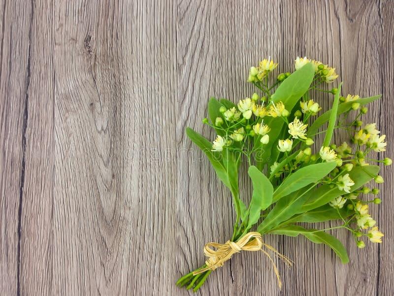 Stillleben mit Linde blüht Blumenstrauß Flache Lage, Draufsicht lizenzfreie stockfotos