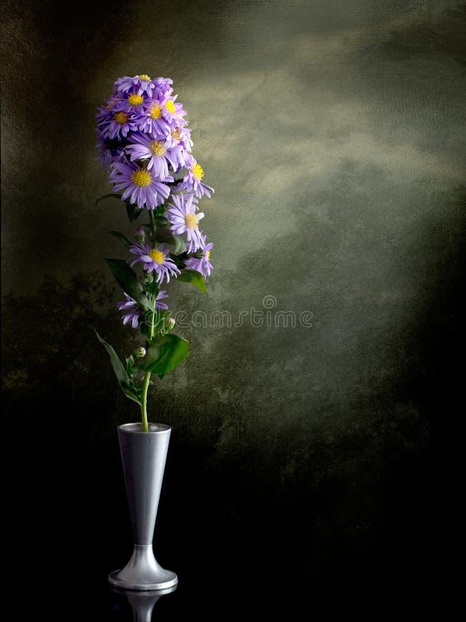 Stillleben mit Michaelmas-Gänseblümchen, Abschied zum Sommer stockbild