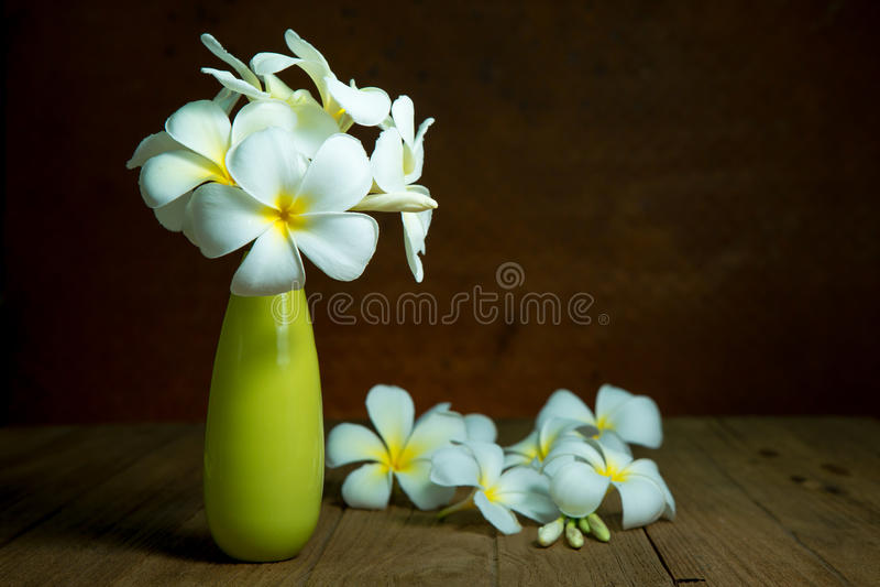 Stillleben mit plumaria Blumen stockfotografie
