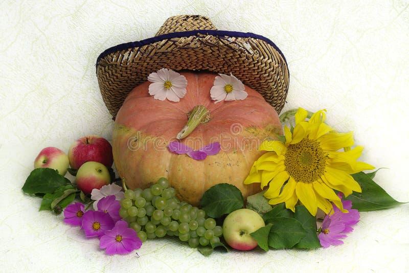 Stillleben mit reifem Kürbis, Äpfeln, Trauben und einem Zerstreuen von Blumen auf einem weißen Hintergrund stockbild
