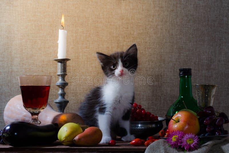 Stillleben mit Schwarzweiss-Kätzchenkürbis-Traubenhund stieg g lizenzfreie stockbilder