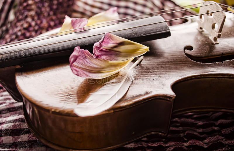 Stillleben mit Weinlesevioline und -blumenblättern Nahaufnahme der alten hölzernen Violine Aufgereihtes Musikinstrument auf abstr lizenzfreie stockbilder