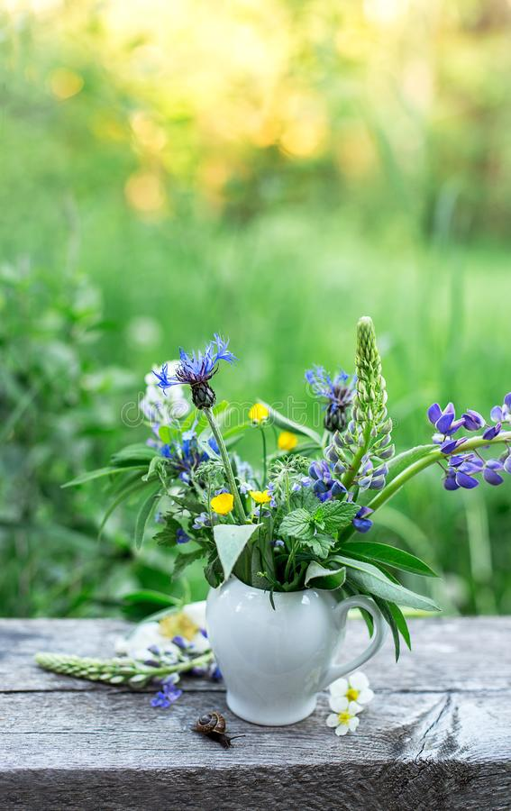 Stilllife with vase with wild flowers and snail on the old wooden table on the nature, sunset royalty free stock photo
