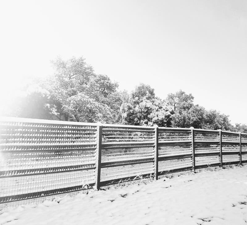 stillness fotografia stock