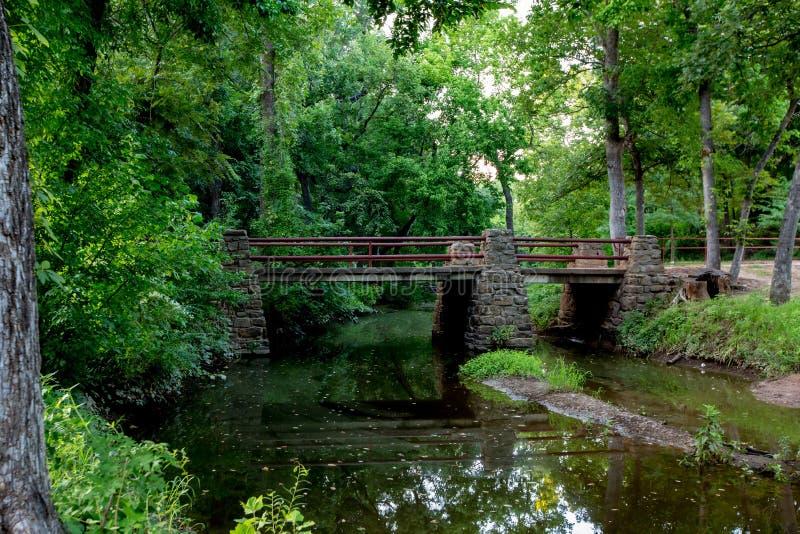 Stillsam en utomhus- plats för vår eller för skogsbevuxen natur för sommar. fotografering för bildbyråer