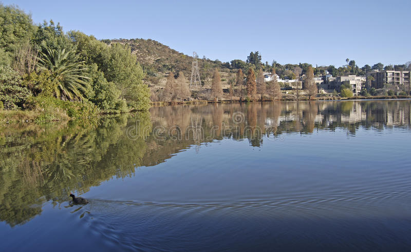 stillsam lake royaltyfria bilder