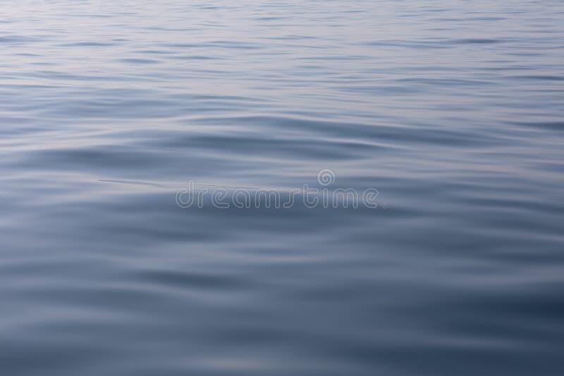 Stillsam och fridfull havyttersida Lugna och avkopplat spegel-som blå havsbakgrund arkivbilder