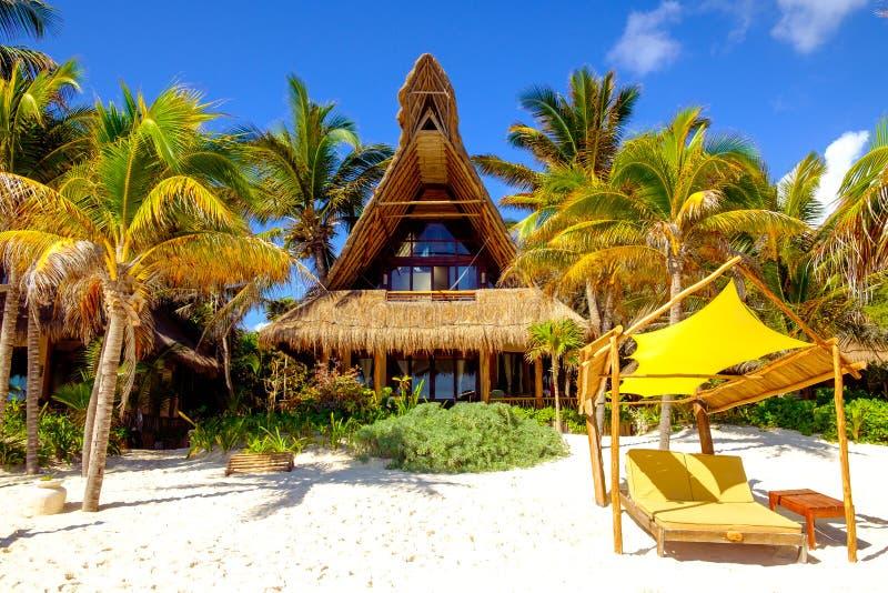 Stillsam plats av den havstranden, palmträd, sängar och kabinen arkivbilder