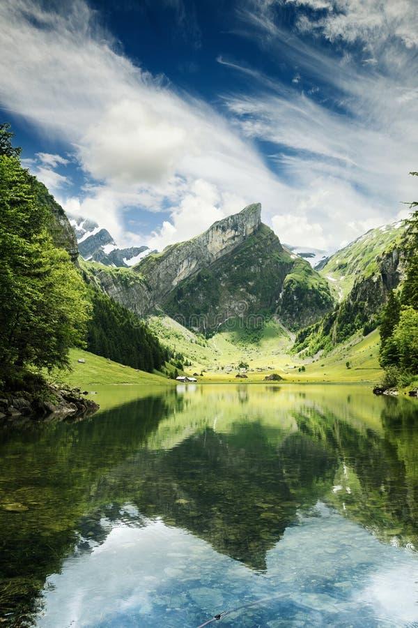 Stillsam plats av seealpseesjön som reflekterar berget av fjällängar arkivfoton