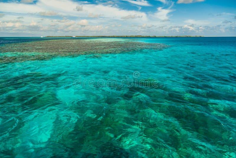 Stillsam strandhavssikt Lugna vatten och horisont i Maldiverna arkivbild