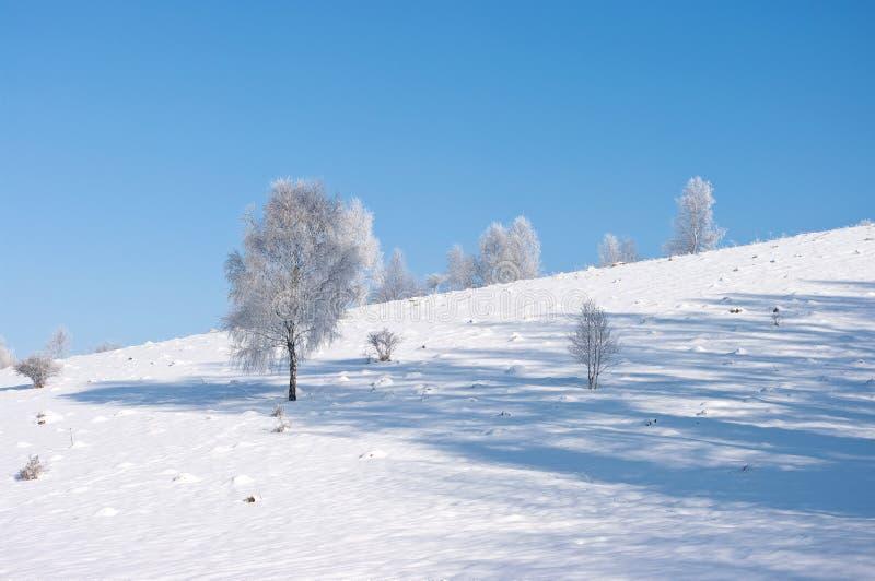 stillsam vinter för plats arkivfoton