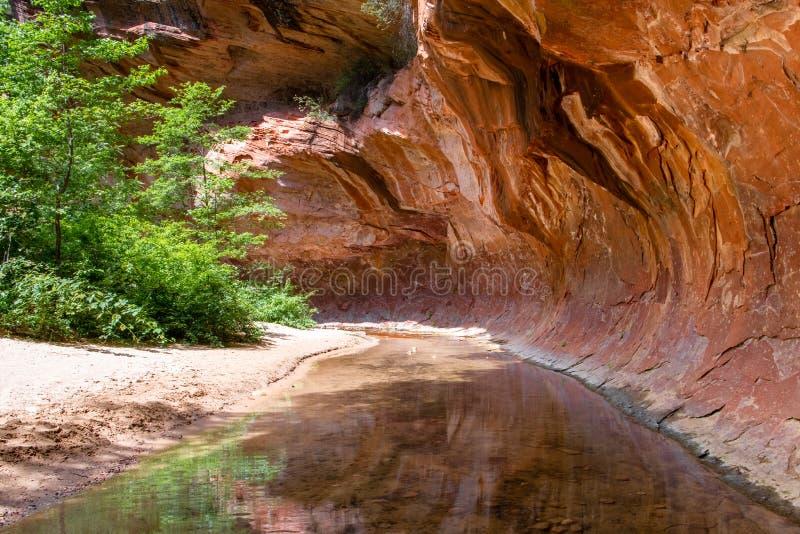 Stillsamma strömflöden till och med en röd tunnel av att hänga över vaggar standstone i en kanjon i de amerikanska sydvästerna arkivfoton