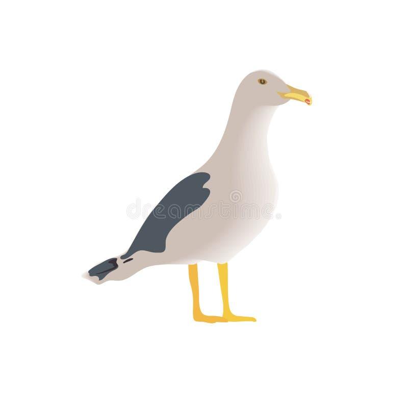 Stillstehender neugieriger stehender Seevogel, halbe Seitenansicht, langer Hals, weiße Federn, Beine, gelber Schnabel, gefaltete  vektor abbildung