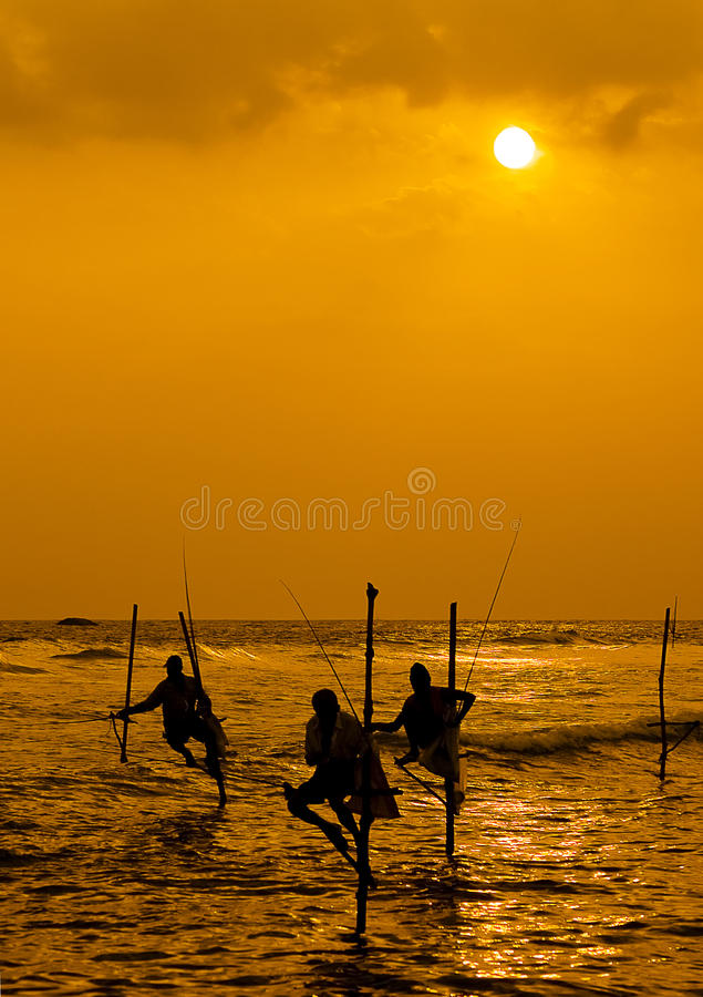 Stilt Fisherman royalty free stock photo