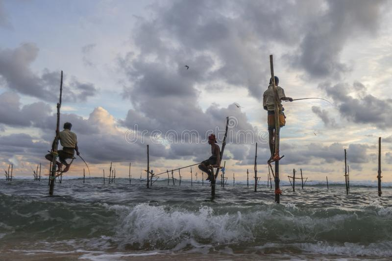 Fishmen on stilts in Galle, Sri Lanka. Stilt fishing is a traditional production method in Galle, Sri Lanka. It has become a local attraction for tourists royalty free stock image