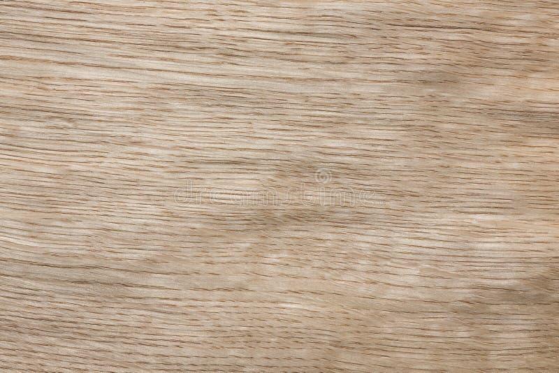 Stilvolle helle Eichenfurnier-blattbeschaffenheit für Ihren Innenraum stockbilder