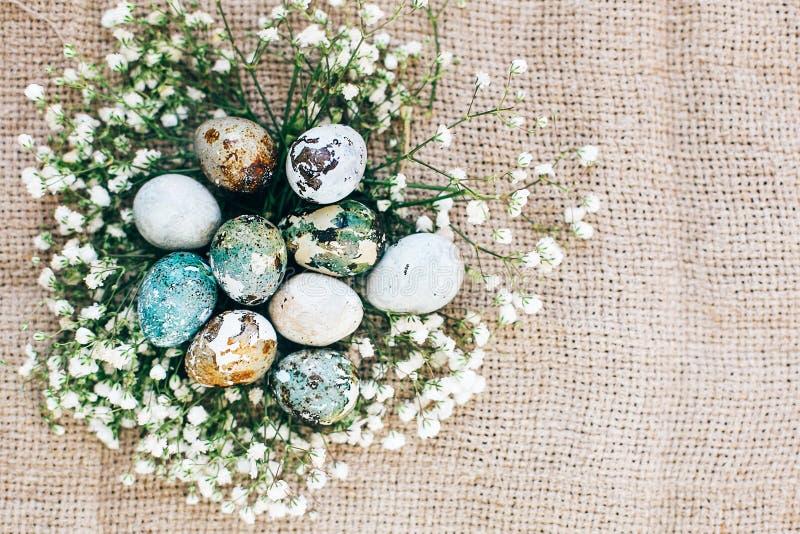Stilvolle Ostern-Wachteleier mit Frühlingsblumen im Blumennest auf rustikalem Gewebe im sonnigen Licht auf Holz Moderne bunte Eie lizenzfreie stockbilder